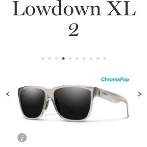 NWT: SMITH LOW DOWN XL 2 SUNGLASSES